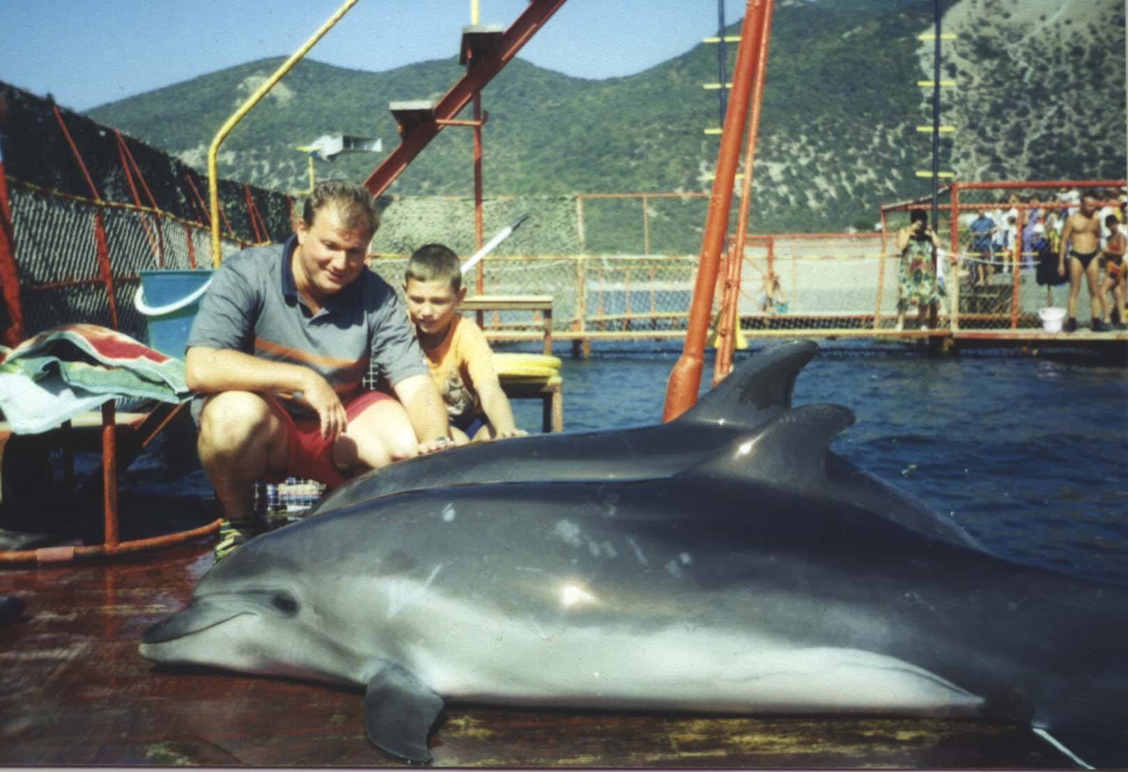 Новосибирск, дельфинарии рядрм с анапой Мебель для
